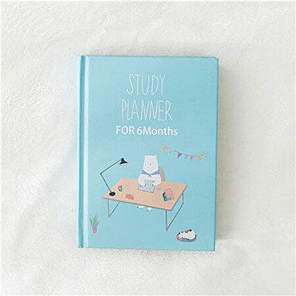 Study Planner for 6 Months Sky Blue