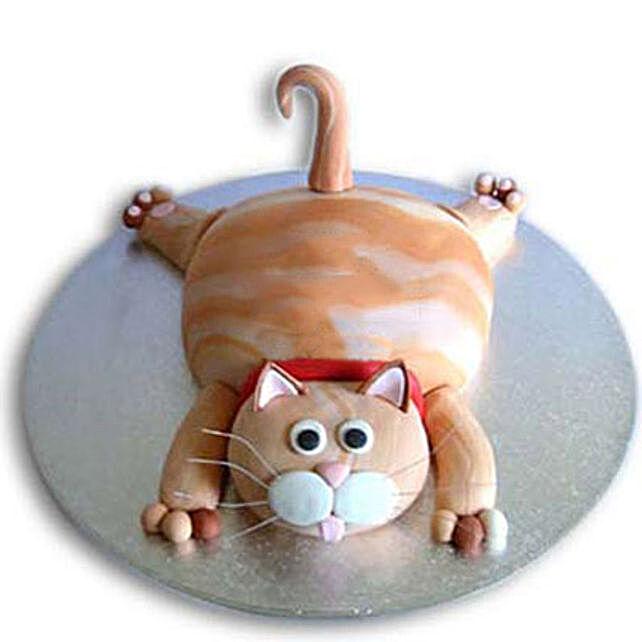 Tabby Cat Cake 3Kg Eggless Vanilla