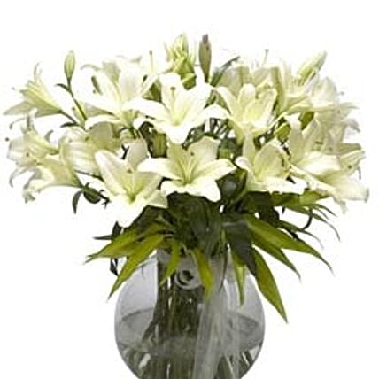 Refined Beauty - Arrangement of 15 white lilies in a glass vase.:Gifts for Taureans