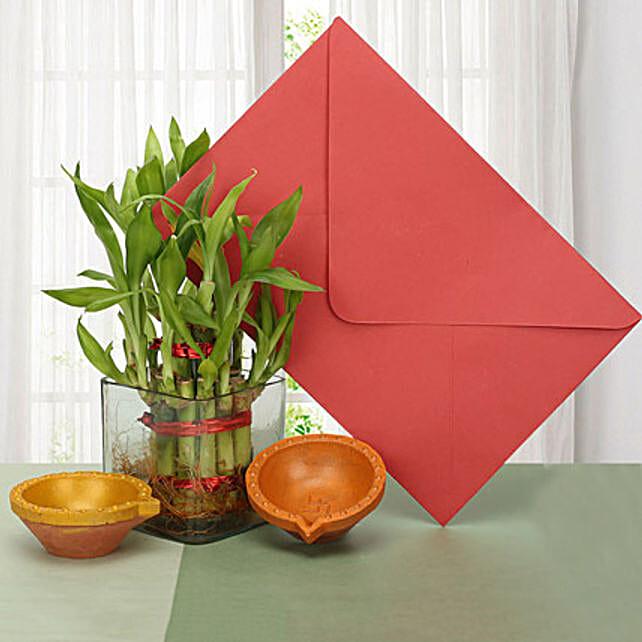 Diyas with lucky bamboo:Plants N Diyas