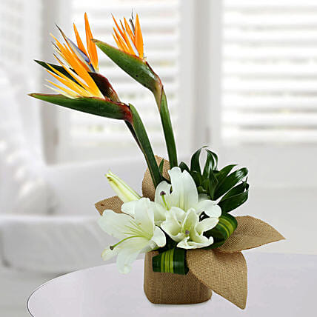 Asiatic Lily Arrangement