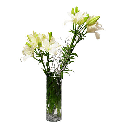 Sweet memories - Glass vase arrangement of 6 white & yellow asiatic lilies.