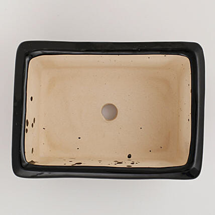 Ceramic Rectangular Bonsai Tray Black