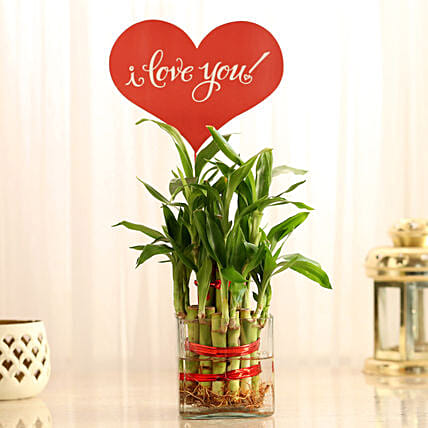 Bamboo Gift for Valentines Day