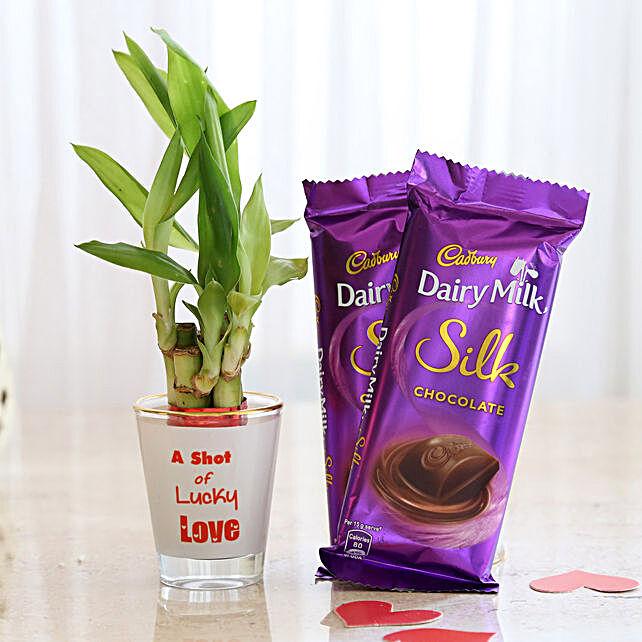 Lucky Bamboo Combo With 2 Cadbury Dairy Milk Silk