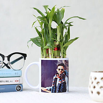 Bamboo Plant in Personalised White Mug