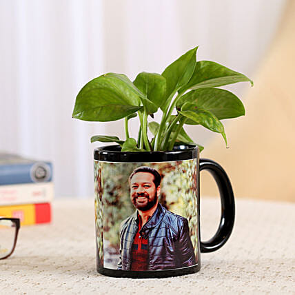 plant in black ceramic mug
