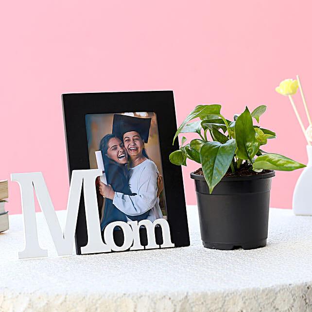 Precious Mom Frame and Plant-1 personalized frame for mom,1 m1y plant