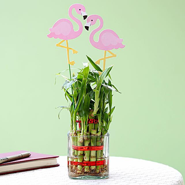 bamboo plants in glass vase