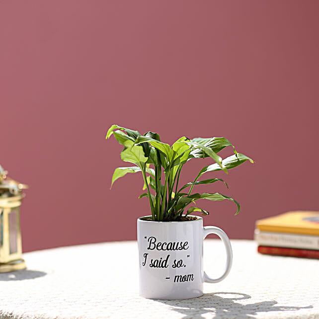 airpurifying plant with printed mug for mom