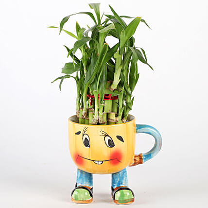 Two Layer Bamboo Plant In Yellow Smiley Pot