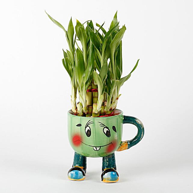 2 Layer Lucky Bamboo In Smiley Mug Green