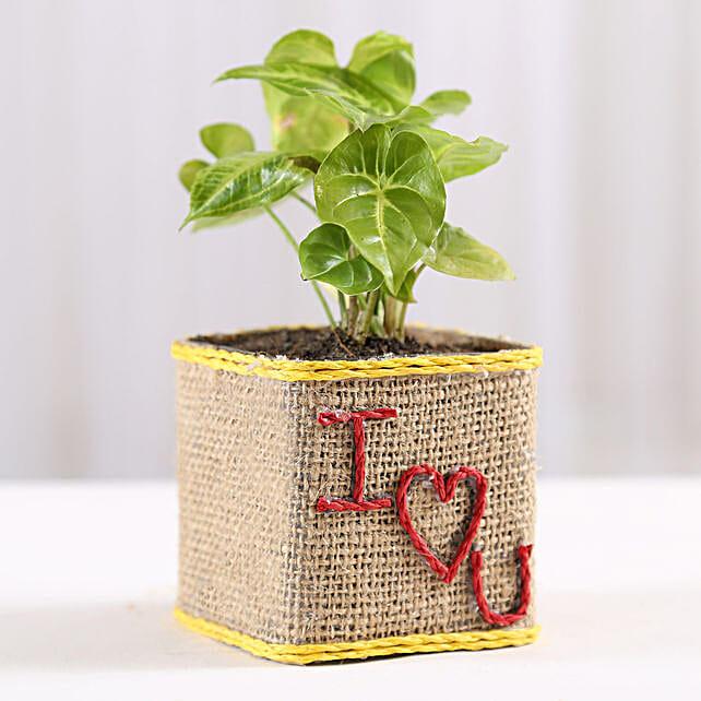 Love Printed Plant Online