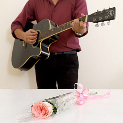 Single Pink Rose Musical Combo 10 to 15 Min
