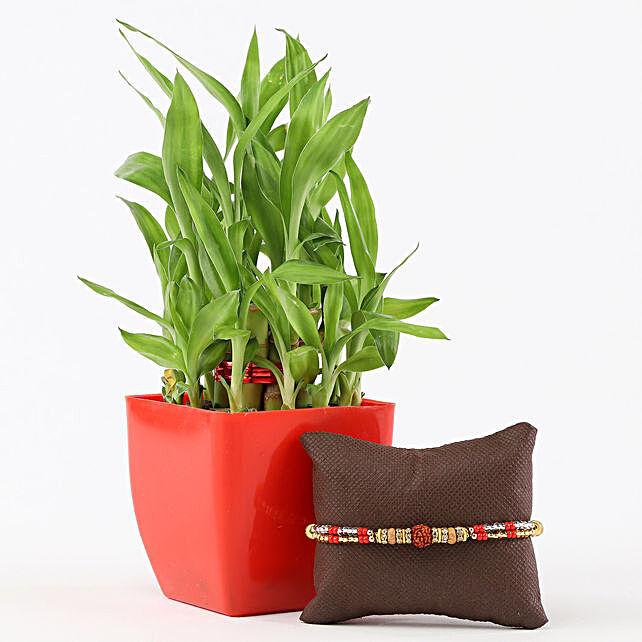 2 Layer Bamboo in Red Pot Rudraksh Rakhi