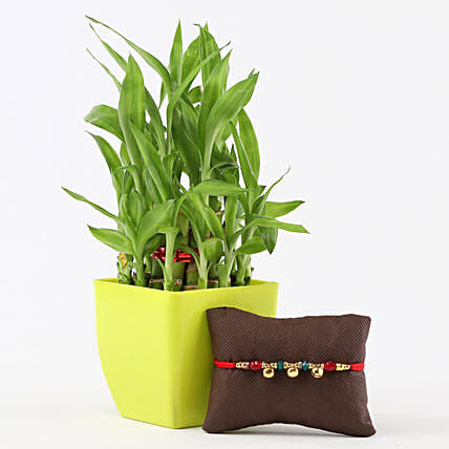 2 Layer Bamboo in Green Pot Designer Bells Rakhi