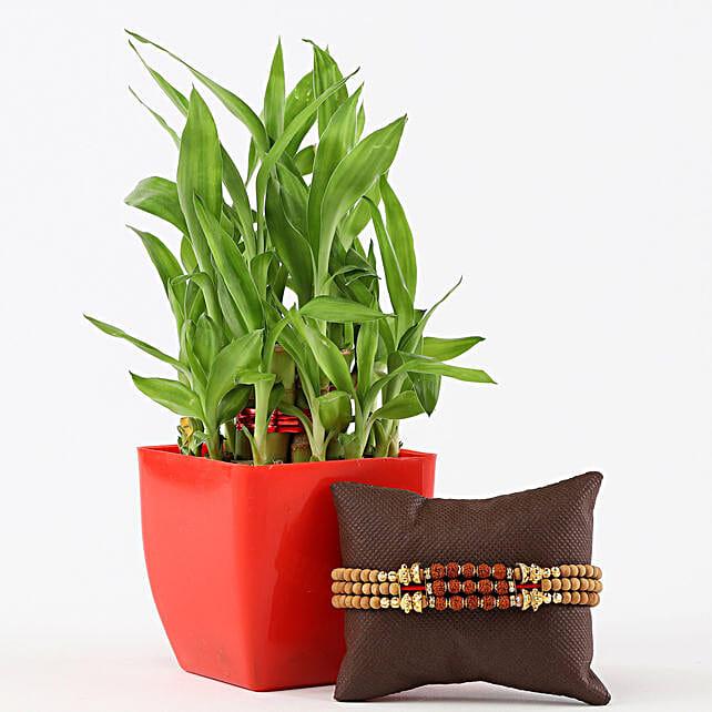 2 Layer Bamboo in Red Pot Designer Rudraksh Rakhi