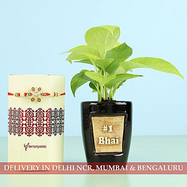 Plant and Rakhi Set for Bro