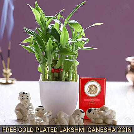 Combo Of Luck With Free Gold Plated Coin
