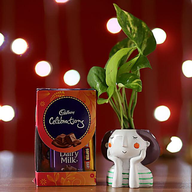 Money Plant Resin Pot & Cadbury Celebrations Box