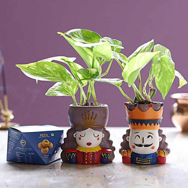 Money Plant Set & Peda Sweet Box