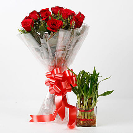 Two Layer Lucky Bamboo With Red Roses Bouquet Combo