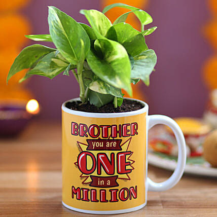 Money Plant in Printed Mug for Brother