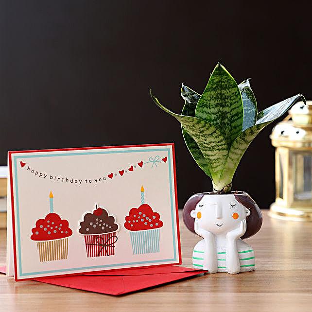 Snakeskin Sansevieria In Resin Pot Birthday Greetings