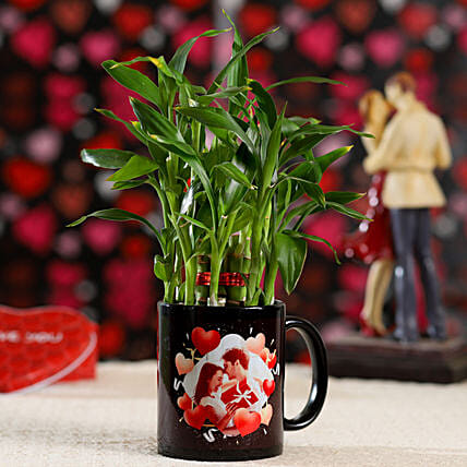 Buy Online Bamboo Plant For Valentines Day:Mugs Planters