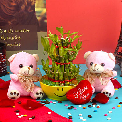 lucky n soft toy combo for valentines day