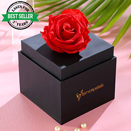 infinity rose in black box online:Hug Day Gifts