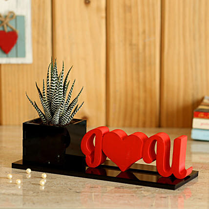 best I love you planter with plant online