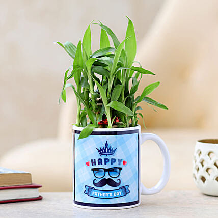 bedroom plant for fathers day