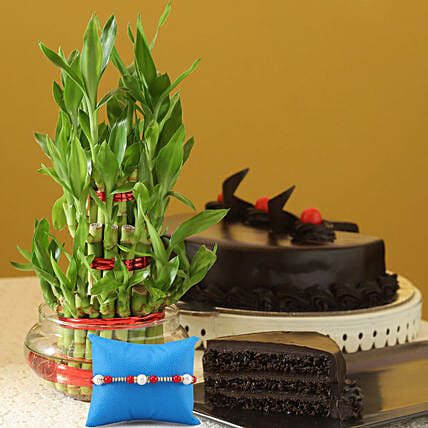 Plant, Cake and Rakhi for Bro