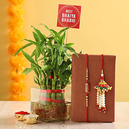 Plant With Rakhi & Roli Set