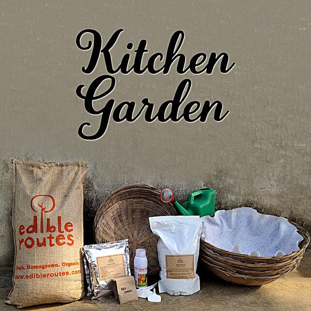 Spinach & Lobia Kitchen Garden Baskets:Buy Gardening Tools