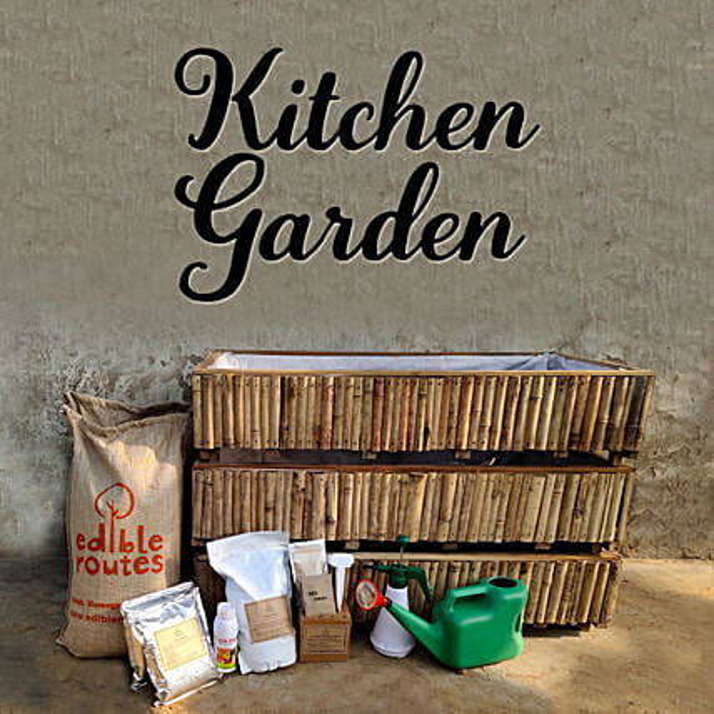 Veggie Kitchen Garden With Bamboo Planters:Gardening Tools