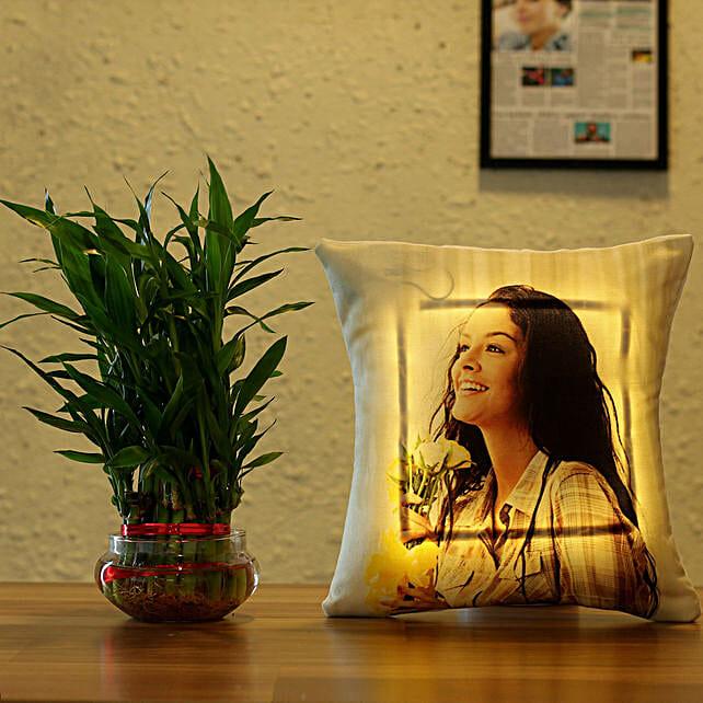 plant n led cushion combo