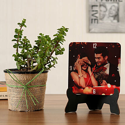 online jade plant with table clock:Plants N Personalised Gifts
