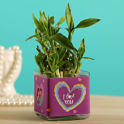 Potted Lucky Bamboo In I Love You Glass Vase