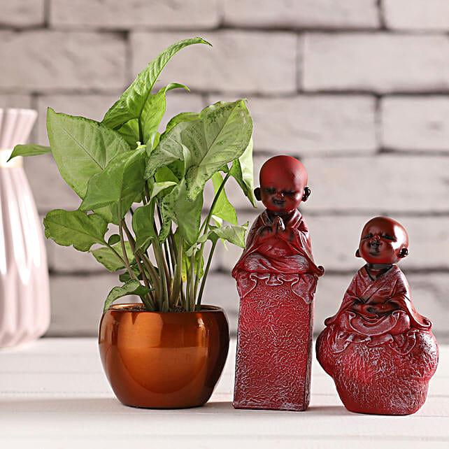 Red Monk Idols & Syngonium Plant