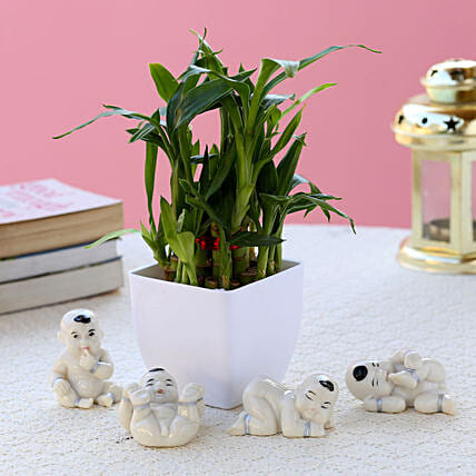 Bamboo Plant with Set of Baby Buddhas:Good Luck Gifts