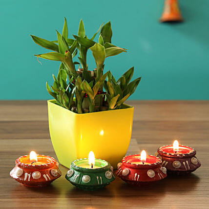 good luck plant for diwali