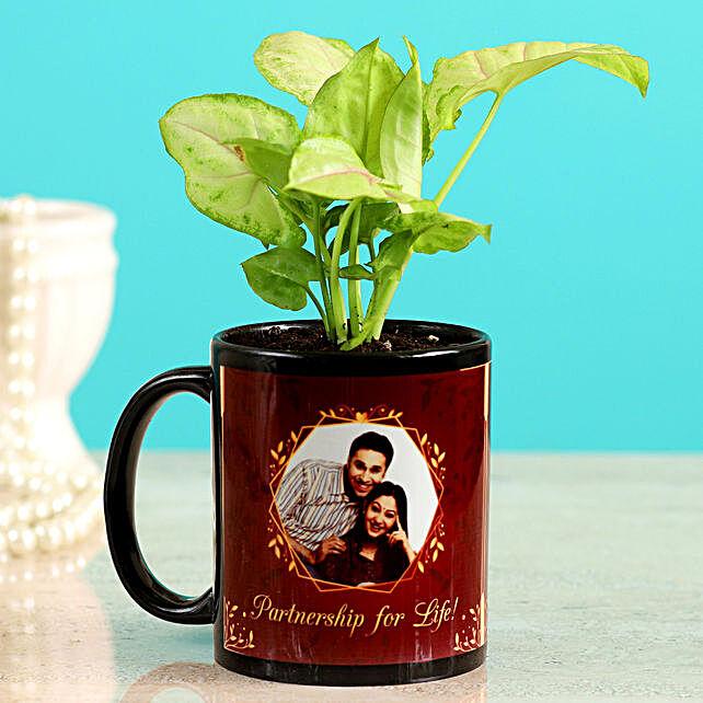 plant in mug planter for online