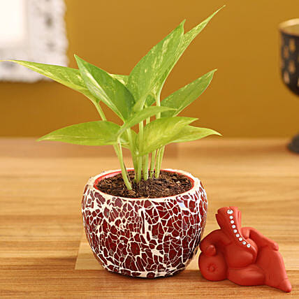 Money Plant Aaram Ganesha Idol