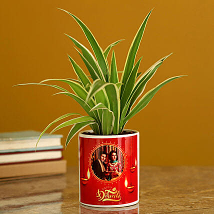 online personalised plant for diwali