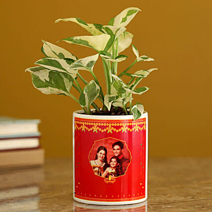 personalised plant for diwali