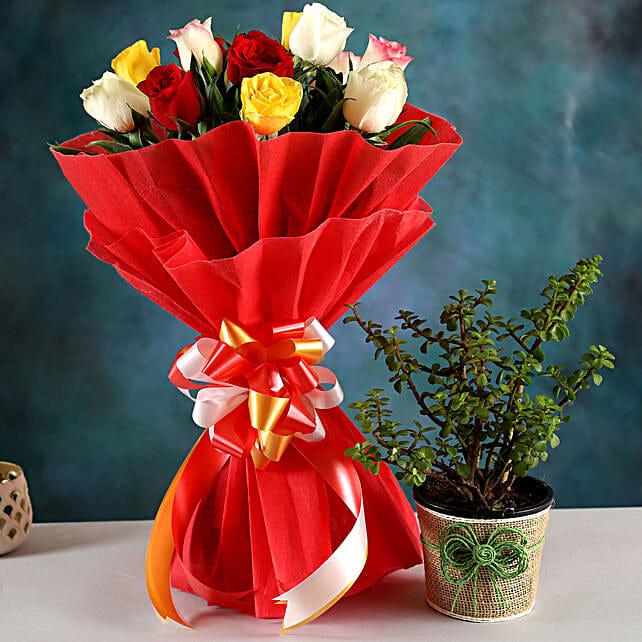 Online Jade Plant And Rose Bouquet:Send Flowers N Plants