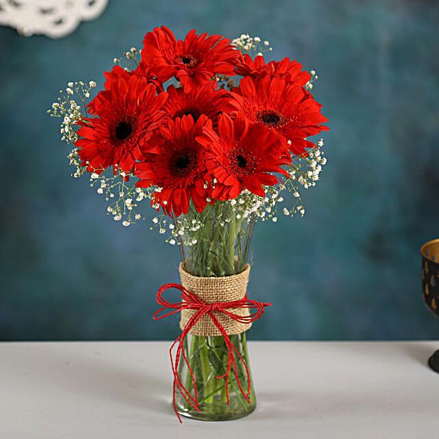 Red Elegance Gerbera Vase