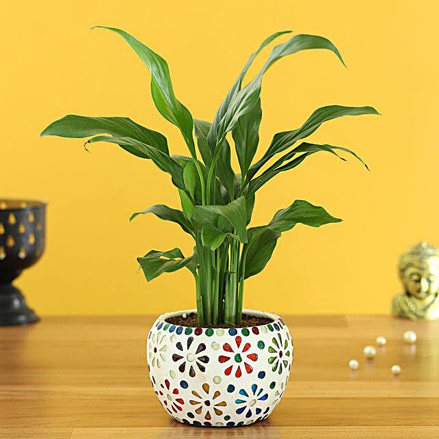 lily plant floral design metal pot